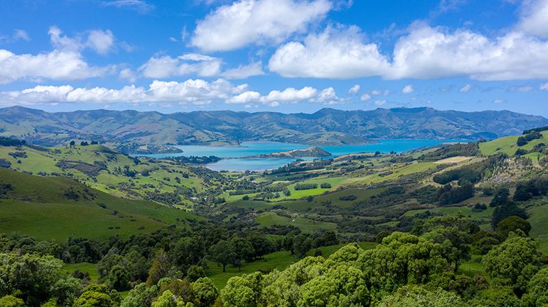 Новая Зеландия путешествия